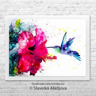 Картина колибри с китайска роза Картина колибри с китайска роза