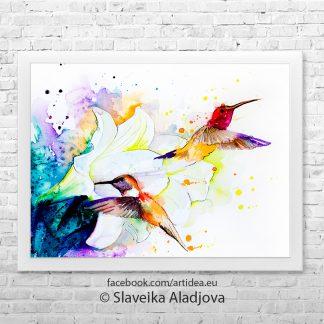 картина колибри с цвете