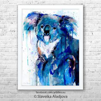 картина коала