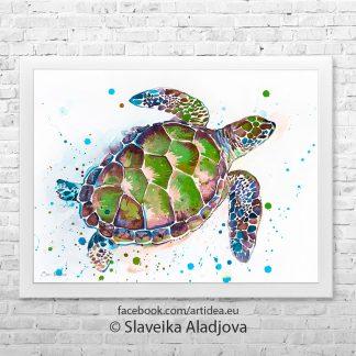 Картина костенурка