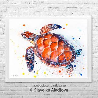 Картина костенурка2