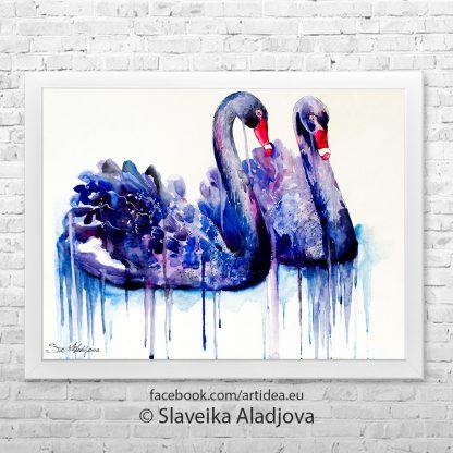 картина черните лебеди