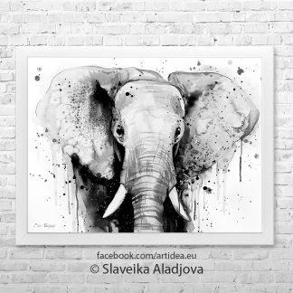 артина на слон черно бял