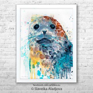 картина петнист тюлен