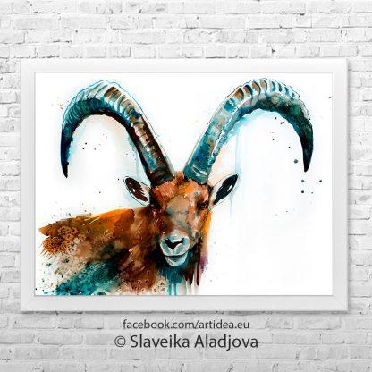картина на дива коза