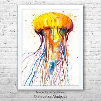картина на медуза