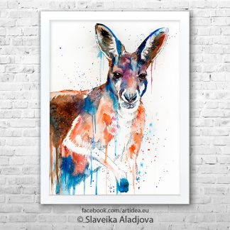 картина на кенгуру