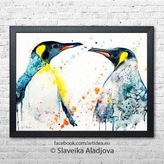 кралски пингвини
