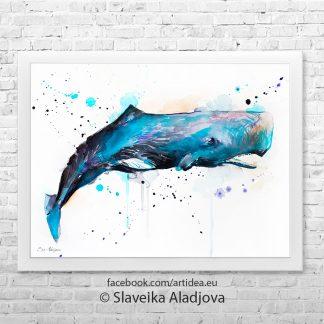 картина на кит