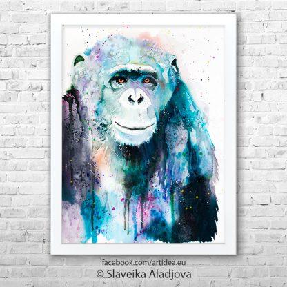 картина на шимпанзе 2