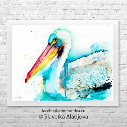 картина на бял пеликан