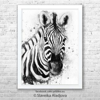 картина на зебра