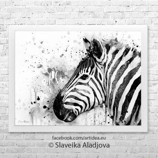 картина със зебра 4
