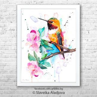 Картина с колибри Червеникаворъждиво