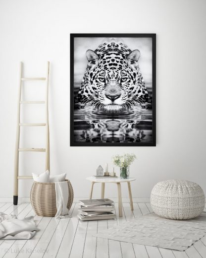 Черно-бяла арт фотография, Леопард