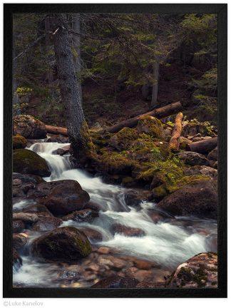 пейзажна фотография поток в гората