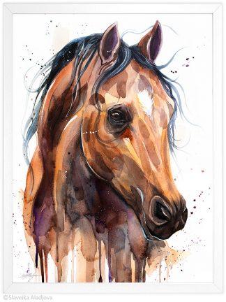 Английски чистокръвен кон, акварелна картина, художник Славейка Аладжова