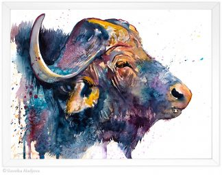 Африкански бивол, акварелна картина, художник Славейка Аладжова