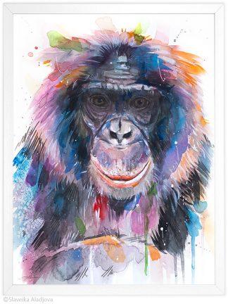 Бонобото
