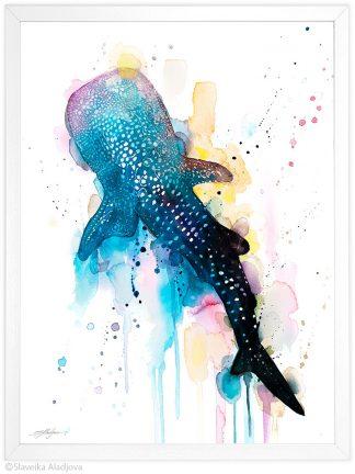 китова акула акварелна картина