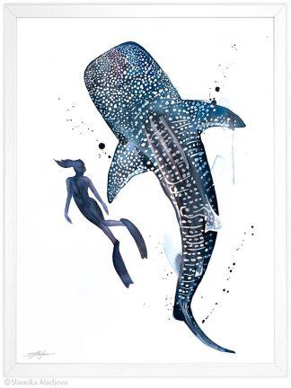 китова акула и водолаз, скуба дайвинг
