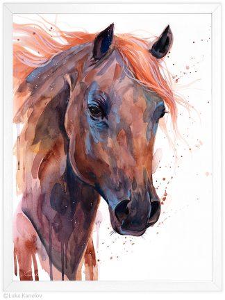 кафяв арабски кон, акварелна картина