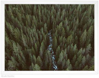 пейзажна фотография, вечно зелена гора и планинска река