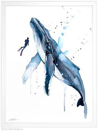 гърбат кит и водолаз, акварелна картина