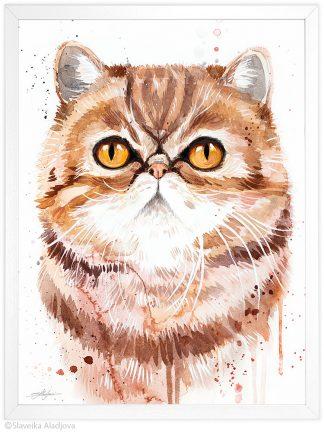 екзотична късокосместа котка, акварелна картина